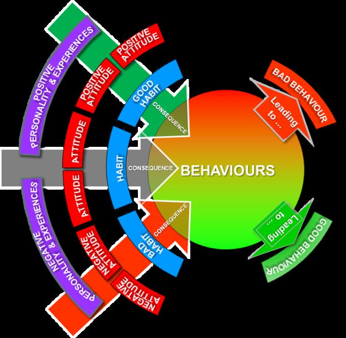 Quality Behaviour